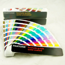 PANTONE Colour Formula Guide 1601N